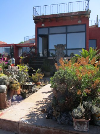 Casa Cinco Patios: Rooftop garden terrace