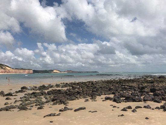 Dolphins Bay: photo3.jpg