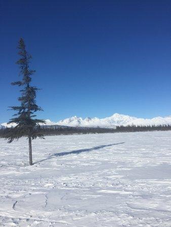 Trapper Creek Picture