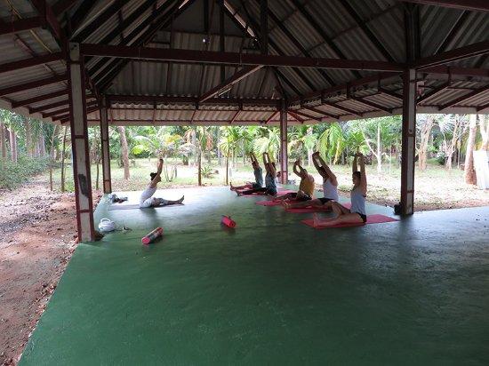 Lipa Noi, Tailândia: Yoga session at Suryamuni Healing Center