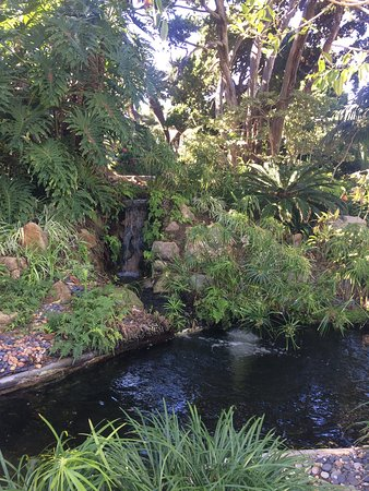 Self Realization Fellowship Hermitage Meditation Gardens Encinitas Ca Top Tips Before You