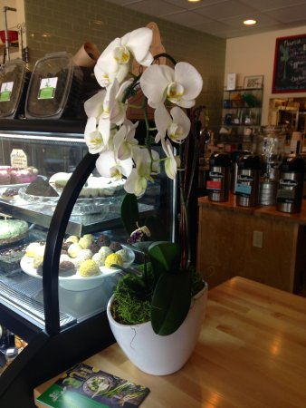 Mequon, WI: Light & airy ambiance, healthy food for body & soul.