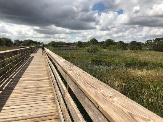 Wakodahatchee Wetlands: photo1.jpg