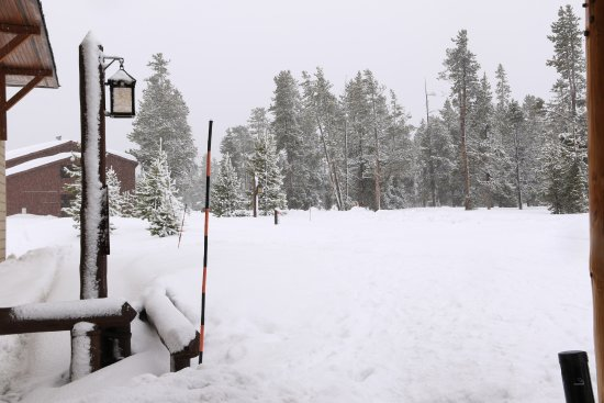 Old Faithful Snow Lodge and Cabins : Front entrance