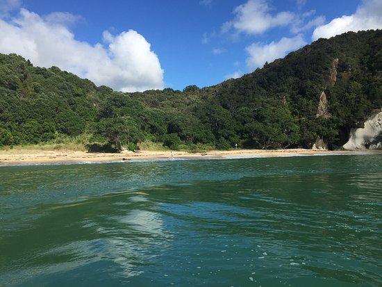 Whitianga, Yeni Zelanda: photo2.jpg