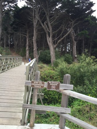 Moss Beach, Kalifornien: Heading up to the overlook
