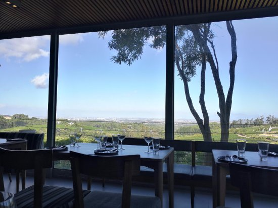 Constantia, South Africa: The view