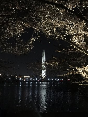 Monuments by Moonlight Night Tour: Washington Monument from the FDR Memorial