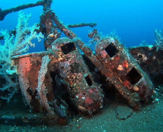Kubu, Indonesia: Details of what you can see on our shipwreck
