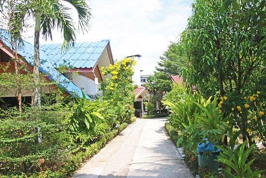 The Krabi Forest Homestay: Weg zur Bungslowanlage