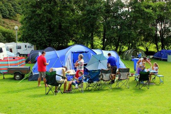 Glan Ceirw Caravan Park : Camping