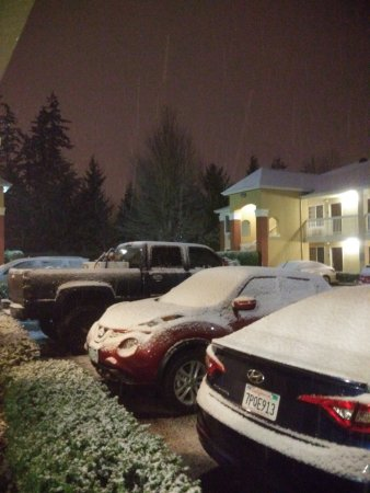 Extended Stay America - Seattle - Bellevue - Downtown : Snow