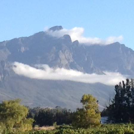 Tulbagh, South Africa: Views from Rijks.