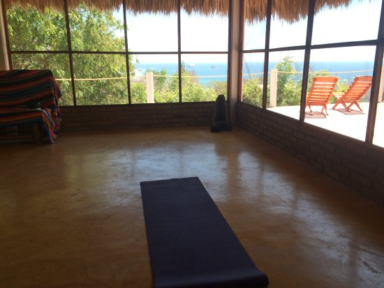 Hridaya Yoga: The view from the small yoga hall