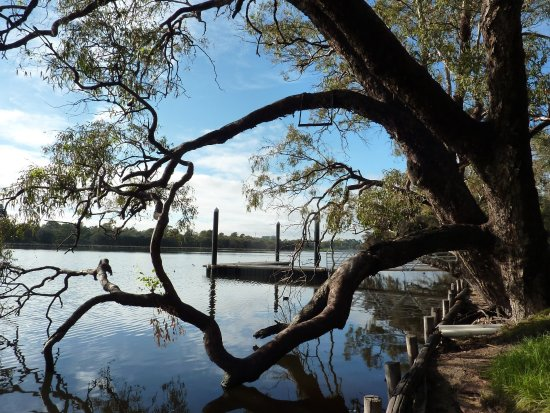 Bayswater, Australia: Peninsula Farm, Maylands, Swan River - Jetty