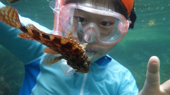 Wakasa-cho, Japan: 見て見て!魚がGETできたよ!!