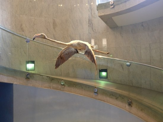 Μουσείο του Ντουμπάι
