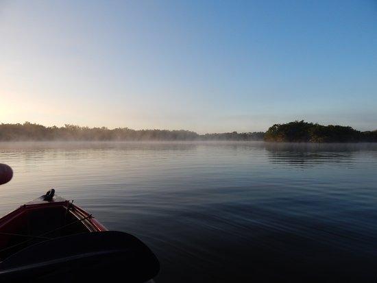 Everglades City, FL: Morning kayaking - water warmer than air!