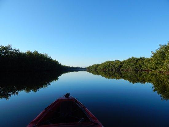 Everglades City, FL: Like a mirror...