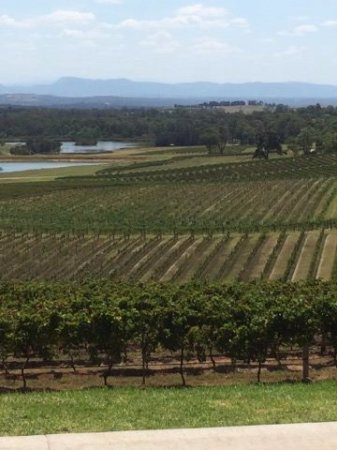 Newcastle, Australien: Hunter Valley Landscape