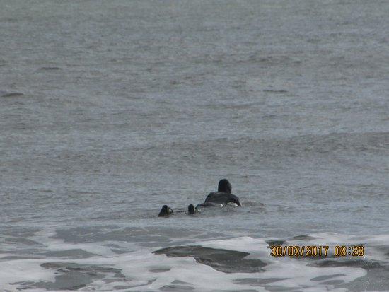 Long Sands Beach: Surfer