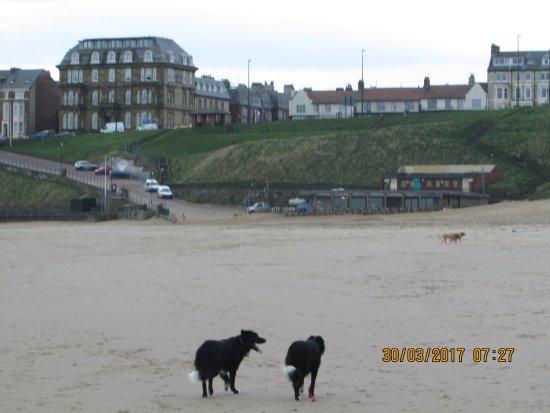 Long Sands Beach: Tynemouth Longsands