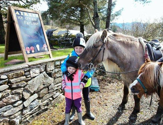 Strathyre, UK: Horse visit