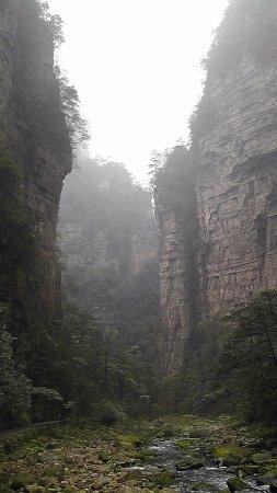 China Connection Tours: Zhangjiajie