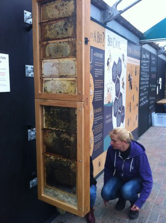 Samlesbury, UK: Inspection hive