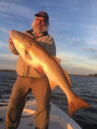 Barataria, LA: Mr Herbster with this great catch of the day!