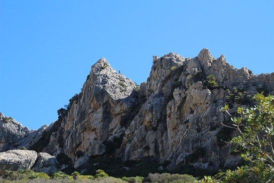 Valle de Boquer, Puerto de Pollensa: typical view in Boquer Valley