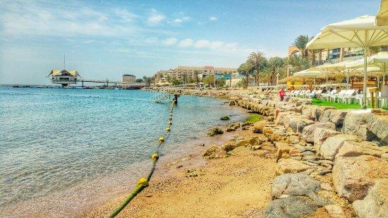 summer is in the air Picture of Avenue Beach Eilat TripAdvisor