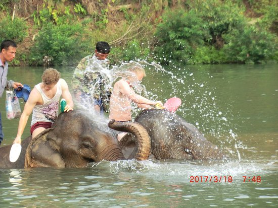Ban Xieng Lom, Laos: washing the elephants