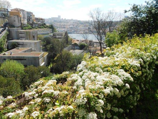 Jardim Municipal do Horto das Virtudes