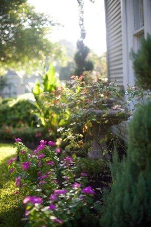 Rockdale صورة فوتوغرافية