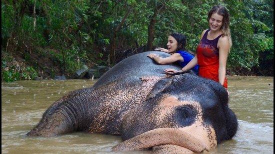 Kegalle, Sri Lanka: bathing