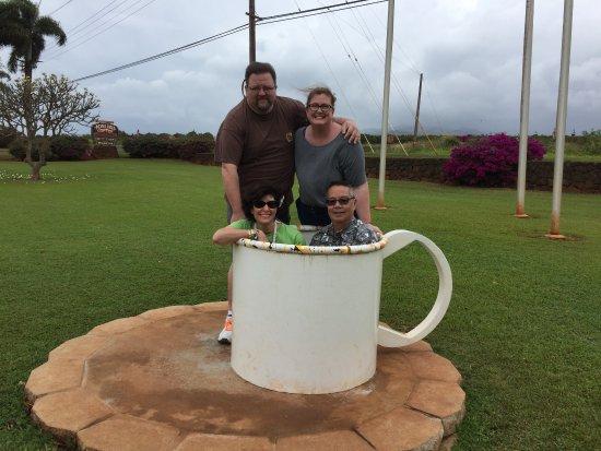 Kalaheo, HI: A cuppa people on the grass!