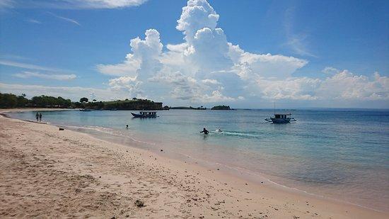 Pink Beach: DSC_1459_large.jpg