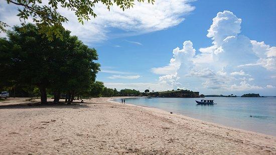 Pink Beach: DSC_1455_large.jpg