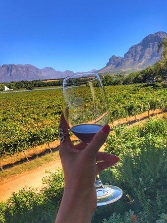 Vrede en Lust Winery: Magnificent views