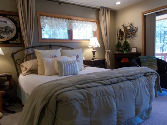 Elk Ridge Bed & Breakfast:  Trees surround you and ...the mountain of Rushmore
