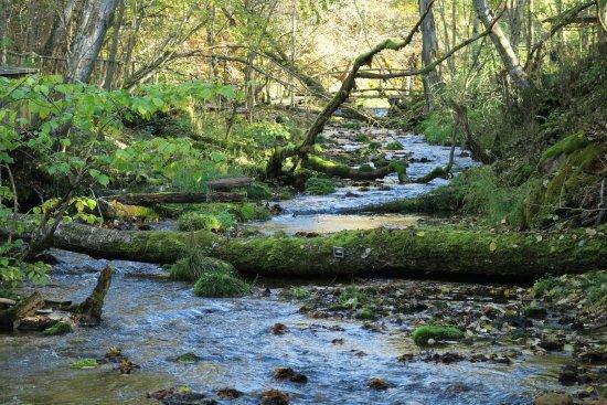 Vidzeme Region, Lettland: River