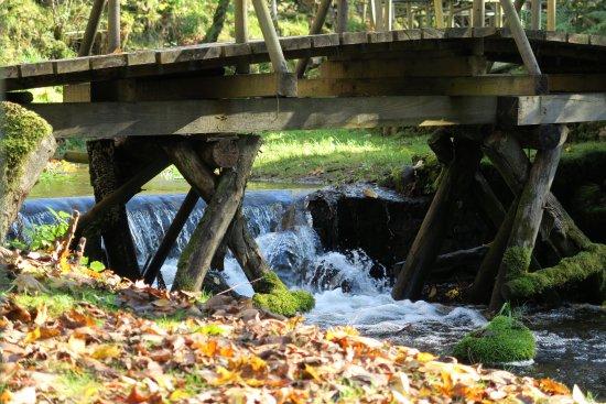 Vidzeme Region, Lettland: Bridge
