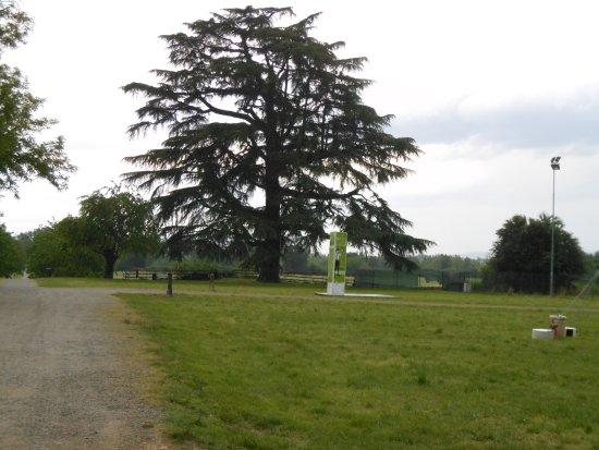 Parco della Reggia Ducale di Rivalta