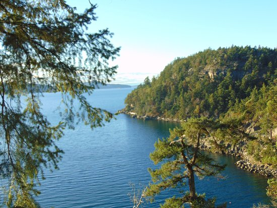Saturna Island, Canadá: View from Cliff Top Camping on Breezy Bay Farm