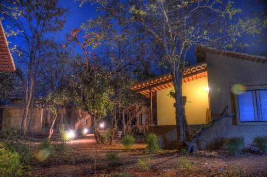 JHARANA JUNGLE LODGE, TADOBA $81 ($̶1̶0̶4̶) - Updated 2019
