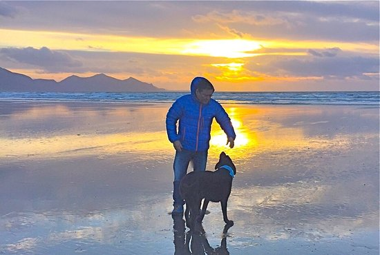 The Vagabond: Beautiful beaches in Snowdonia.