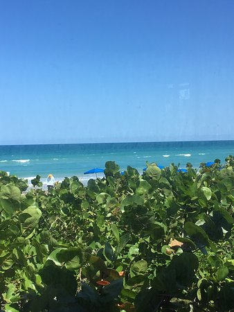 Jensen Beach, FL: photo1.jpg