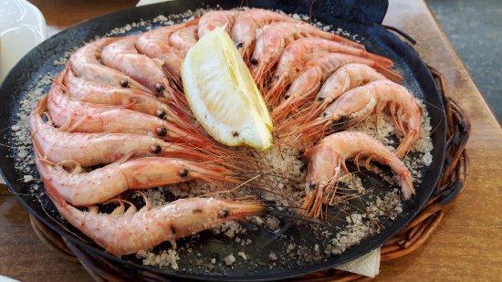 Lago Verde : De zeldzame garnalen, elk restaurant krijgt er na de vangst maar 1 kilo van, geweldig.