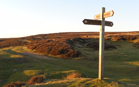 Helmsley, UK: Steve will guide and entertain you on the very best walks in the Yorkshire Dales & the Lake Dist